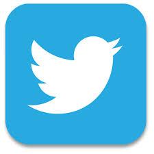 twitter button 2