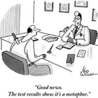 Metaphors #physiotalk with @knowpainmike 19th Jan 2015