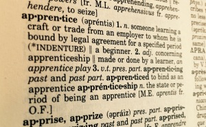 apprentice2