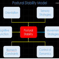 Postural Stability in Practice #physiotalk 14th Dec 8pm